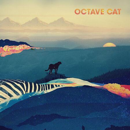 Octave Cat