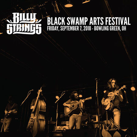 09/07/18 Black Swamp Arts Festival, Bowling Green, OH