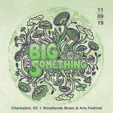 11/09/19 Woodlands Music & Arts Festival, Charleston, SC
