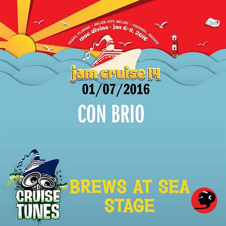 01/07/16 Brews at Sea Stage, Jam Cruise, US