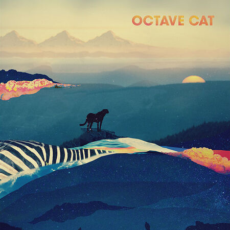 Octave Cat