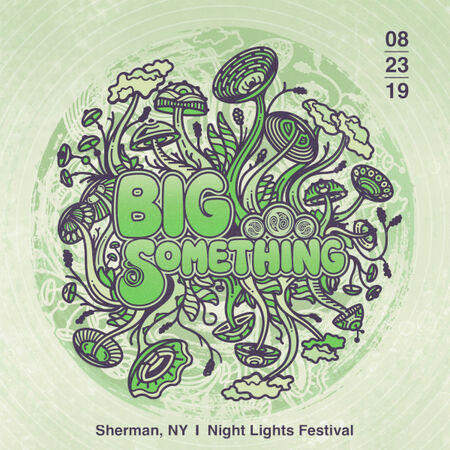 08/23/19 Night Lights Music Festival, Sherman, NY