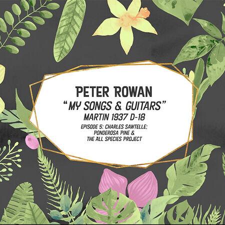 05/27/21 My Songs & Guitar Episode 5: Martin 1937 D-18, Marin County, CA