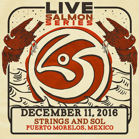 12/11/16 Strings and Sol, Puerto Morelos, MX
