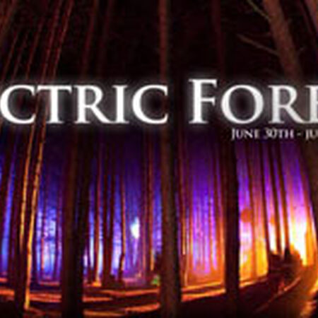 SCI Electric Forest 2011
