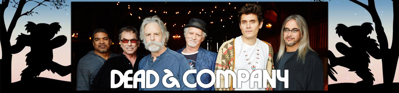 Live Dead and Company